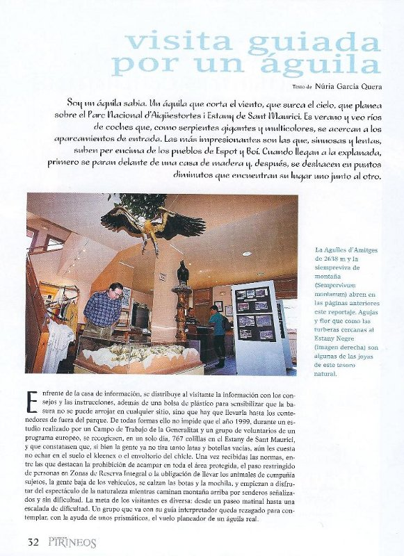 article_17